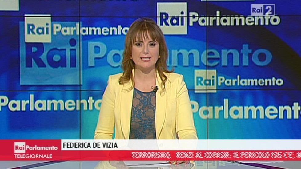 Federica de vizia rai parlamento tgr emilia romagna 2 for Parlamento rai