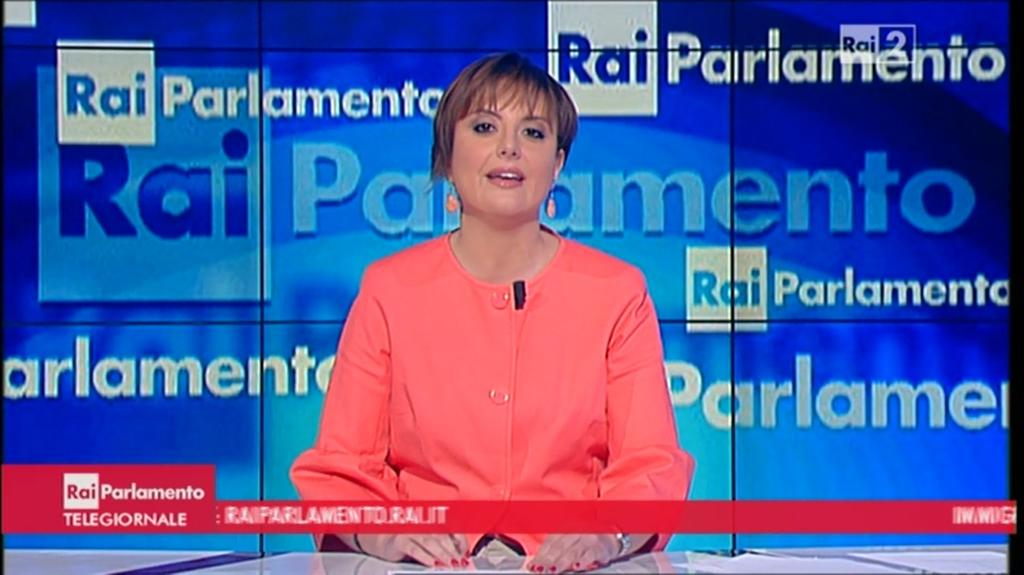 Federica de vizia rai parlamento tgr emilia romagna 4 for Parlamento rai